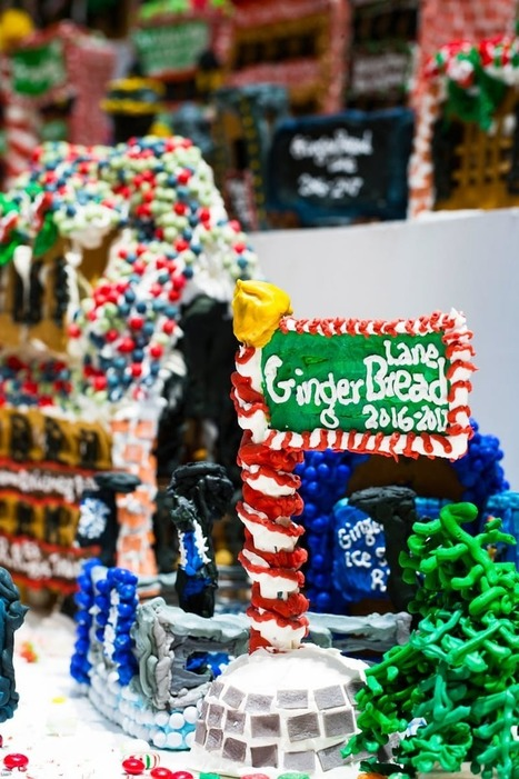 "The Guinness Record Holder for ""World's Largest Gingerbread Village"" Shares His Best Tips — Tips from The Kitchn 