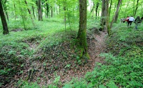La forêt de Verdun, écrin vert créé par la guerre | Un peu de tout et de rien ... | Scoop.it