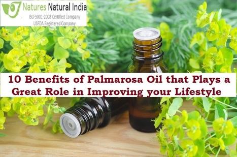 Pure Bulk Essential Oils' in Natures Natural India - Bulk Essential
