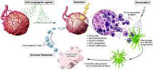 Angiogenesis Inhibitors | Melanoma BRAF Inhibitors Review | Scoop.it