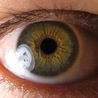 Chicago Stem Cells Institute is performing Stem Cell Therapy for Ophthalmology