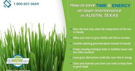 lawn mowing service near me' in lawn Cutting service Texas