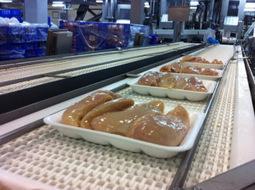 Con desechos de la papa desarrollarán envases biodegradables para la industria avícola | Transición | Scoop.it