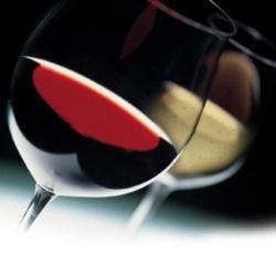 Nuova formula per Di Vini Profumi - Il sito di Prato | Wine in Tuscany | Scoop.it