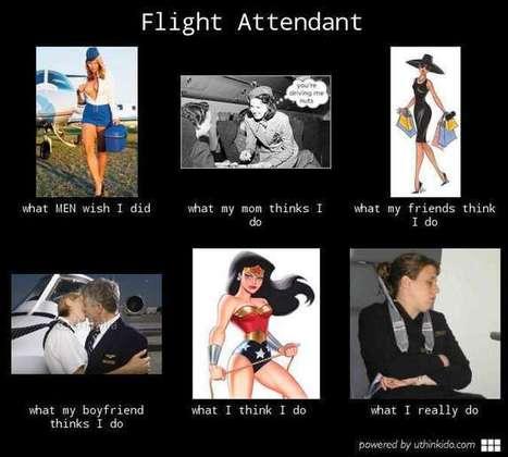Flight Attendant   MulderComicReport   Scoop.it