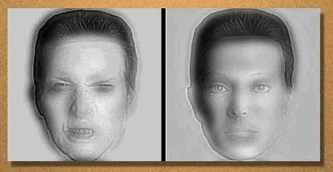 Notre cerveau nous maintient en illusion d'optique permanente | Neotrouve | A la recherche des extraterrestres | Scoop.it