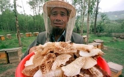 Nouveau scandale en Chine: le faux miel | Articles divers | Scoop.it