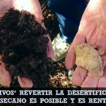 Por qué y cómo cultivar cereal sin labranza ni venenos y de forma rentable. Caso real de una finca en Guadalajara | Permacultura y autosuficiencia | Scoop.it