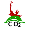 Voluntary Carbon Offsets
