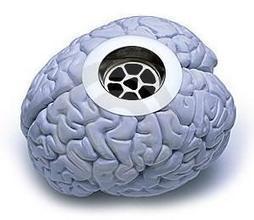 The Brain Drain of Inactivity   Early Brain Development   Scoop.it
