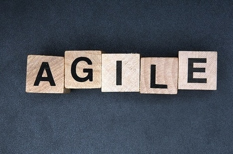 Learning Agility: Looking Beyond Experience to Find Next-Generation Leaders   Self-managed Learning   Scoop.it