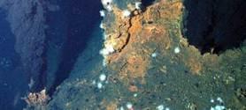 Vers une exploitation minière des grands fonds marins | Pollutions minières | Scoop.it