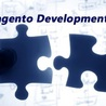 Magento Shopping Cart development