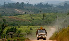Deforestation at record low, data shows | Global environmental change | Scoop.it