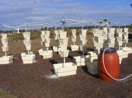 Observer News - HCC earns USDA grant for hydroponics farm | Vertical Farm - Food Factory | Scoop.it