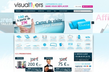 Témoignage de E-Commerçant – Julien de la Boutique Visual Flyers | WebZine E-Commerce &  E-Marketing - Alexandre Kuhn | Scoop.it