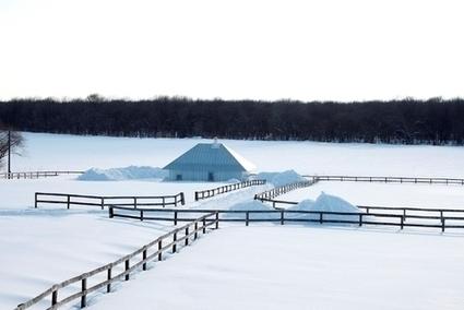 Kengo Kuma & Associates — Meme Meadows | Green Architecture | Scoop.it