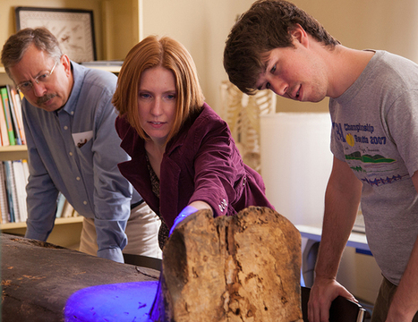 Egyptologist sheds light on Tulane mummies | Egyptology and Archaeology | Scoop.it