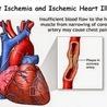 Cardiovascular and vascular imaging