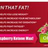 Raspberry Ketones Max Diet Pill