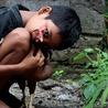 Sustainable Development in Bali