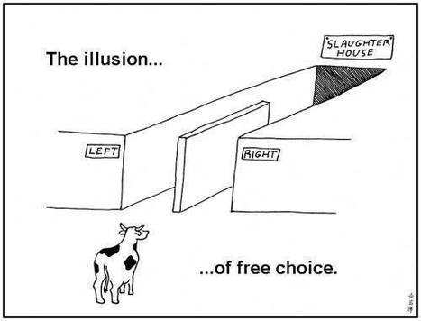The Illusion of free choice | Activism, society and multiculturalism | Scoop.it