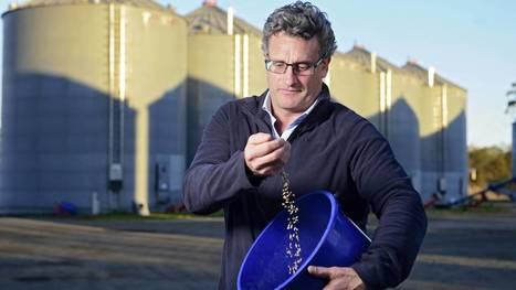New brew for coeliacs | Video | Gluten Freedom | Scoop.it