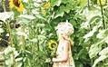 Gardening for children: Sunflower alley - Telegraph | 100 Acre Wood | Scoop.it