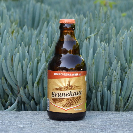 We Tasted 12 Gluten-Free Beers To Try And Find One That's Not Terrible | Gluten Freedom | Scoop.it