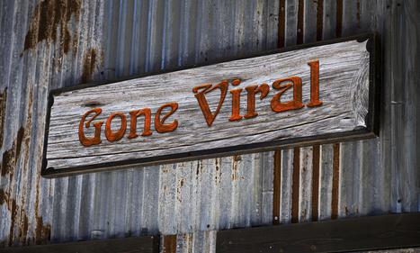 5 Clever Social Media Marketing Campaigns that Went Viral | Jeff Bullas | Vetpreneur Entprises, LLC | Scoop.it