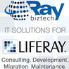 Liferay CMS Portal Development