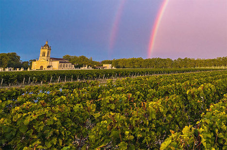 Anson: How the Bordeaux market is shaping up ahead of 2016 en primeur | Vitabella Wine Daily Gossip | Scoop.it