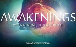 How to live a GMO-free life: Hear the 'Awakenings' podcast from the Health Ranger | Multi- gene | Scoop.it