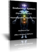 Understanding The Endocrine System | College Of Practical Homeopathy | Anatomy | Scoop.it