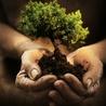 Développement durable & Environnement
