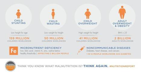 Why working to end malnutrition is our profession—and our passion | IFPRI Research | Scoop.it