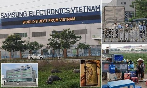 Inside Samsung's Vietnam factory for 'explosive' Galaxy Note 7 | Sustainable Procurement News | Scoop.it