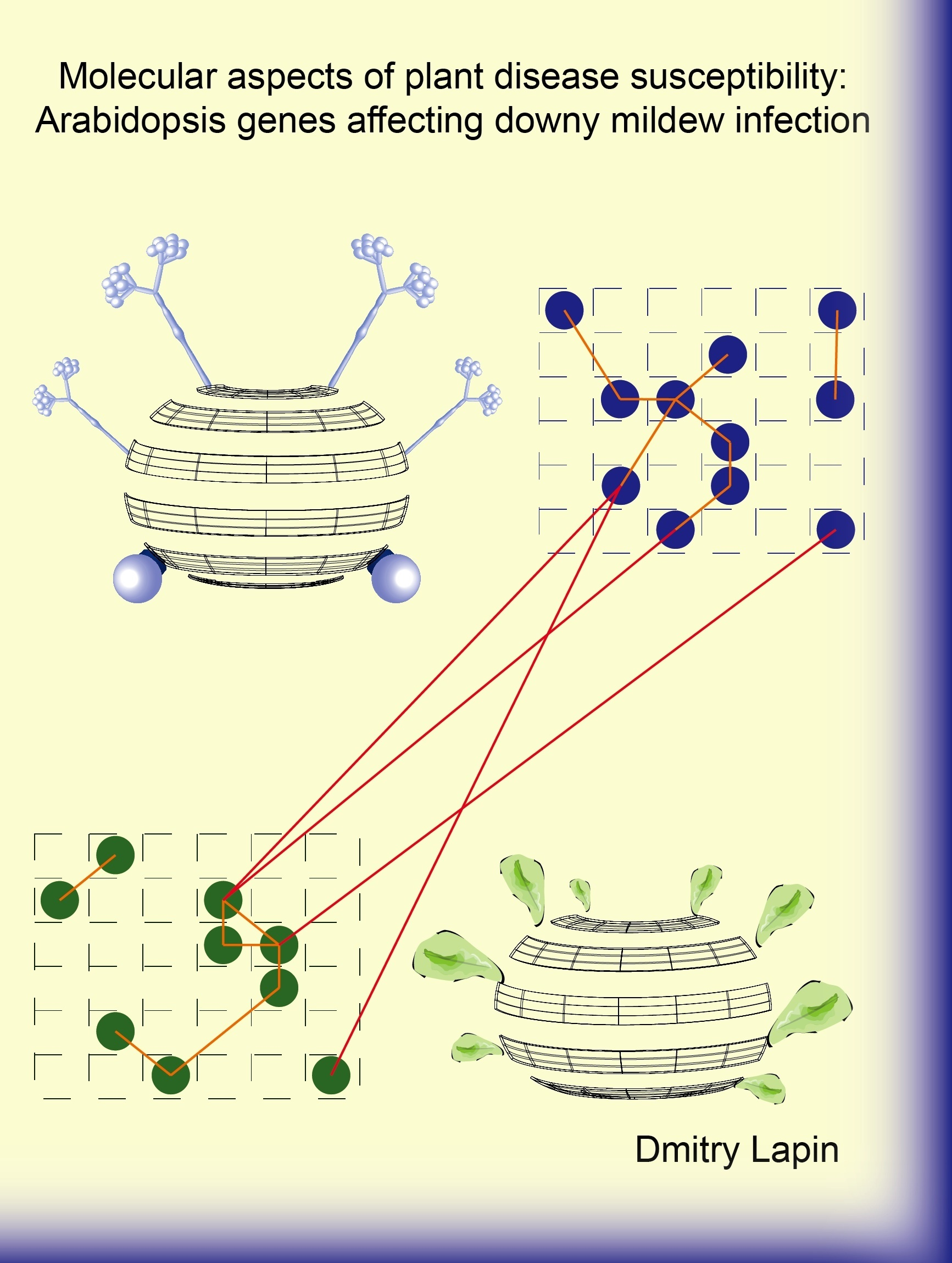 thesis molecular modeling Such a multiscale model is used in this thesis it is often a rather small part of the  total molecular system for which the properties need to be calculated this is the .