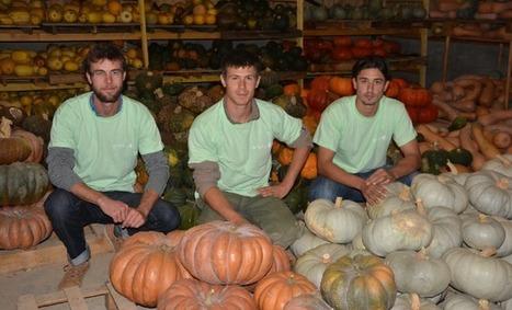Un nouveau bâtiment pour les couveurs agricoles dans le Marmandais | Agriculture Aquitaine | Scoop.it