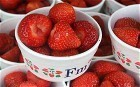 Internet 'weighs the same as a strawberry' - Telegraph | Curation Revolution | Scoop.it