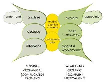 Systems Thinking and Complexity 101 | La brecha de la complejidad | Scoop.it