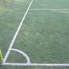 Montpellier Info - L'actu sport