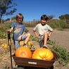 Marin Family Activities