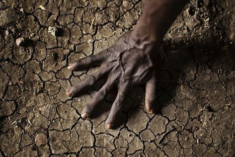 World Not Ready for Climate Change, New Report Says | Trends in Sustainability | Scoop.it