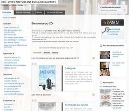 Suggestion d'organisation d'un portail e-sidoc - Canopé académie de Dijon | Portail E-sidoc | Scoop.it