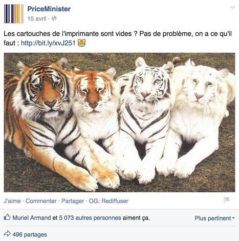 Tourisme : les réseaux sociaux devraient être u...   Sébastien KOUKEL   Scoop.it