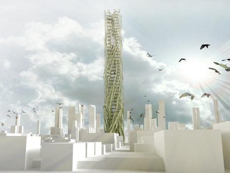 Agriculture verticale urbaine : il n'y a pas que les végétaux qui poussent bien | Sustainable agriculture | Scoop.it