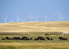 Obama Energy Policy Shifts in Favor of Renewables | Sustainable Futures | Scoop.it