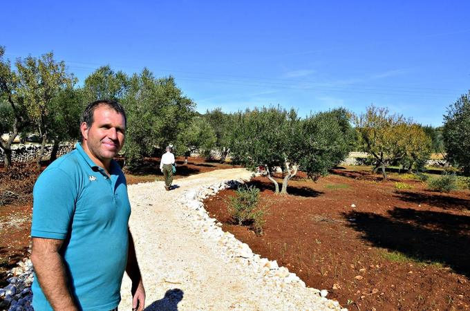 Olive Oil Times – News, Reviews and Discussion