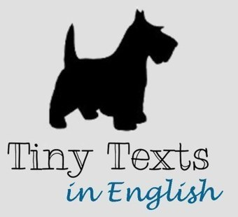 Ask Task: What are Tiny Texts? | Learning English Matters | Scoop.it